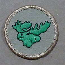 17 Best Images About Boy Scouts Of America  Tichora Merit Badges On Pinterest  Shops, Merit