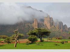 Regreening Ethiopia – Make Wealth History