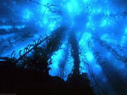 Wallpapers Deep Sea Cave Apple