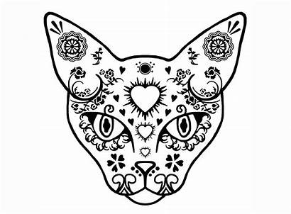 Skull Sugar Cat Glass Decals Coloring Pages