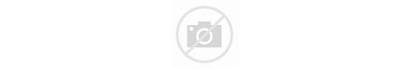Ltd Partners Ams Holdings Transport Hk