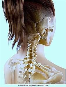 Douleurs Dents De Sagesse : douleurs la m choire inf rieure droite ou gauche dent de sagesse ~ Maxctalentgroup.com Avis de Voitures