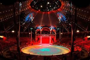 fotogalerie, des, circus, roncalli