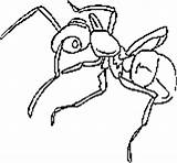 Coloring Ants Ant Farm Printables Building Central sketch template