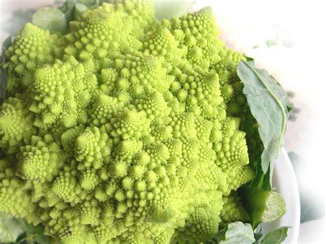come si cucina il cavolfiore romanesco broccolo romanesco o cavolo cimoso usi in cucina e