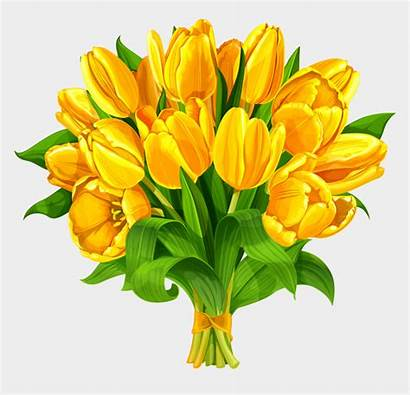 Bouquet Clipart Flower Flowers Tulip Yellow Tulips