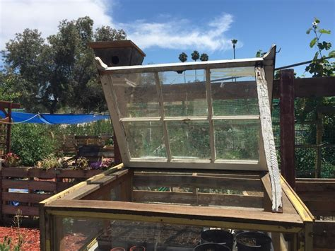 Hometalk   Upcycled Windows Into Small Greenhouse