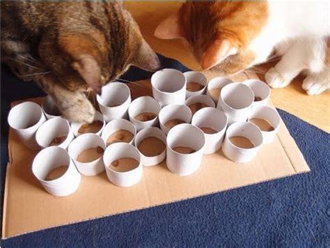 jouet pour chat fait maison les 25 meilleures id 233 es de la cat 233 gorie jouets pour chiens faits maison sur chien
