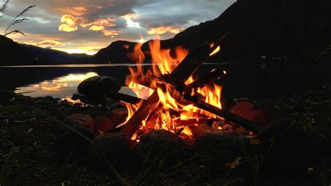 lakeside campfire  relaxing nature night sounds hd