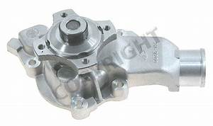 Engine Water Pump Fits 1999