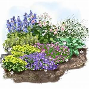les vivaces fleuries au jardin jardin exterieur With amenagement petit jardin avec terrasse 5 jardin verger jardin potager jardineries truffaut