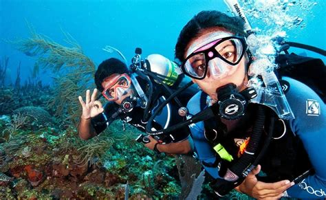 scuba diving in tarkarli thrillophilia