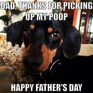 Dachshund Father's Day Card funny meme   Dachshund ...