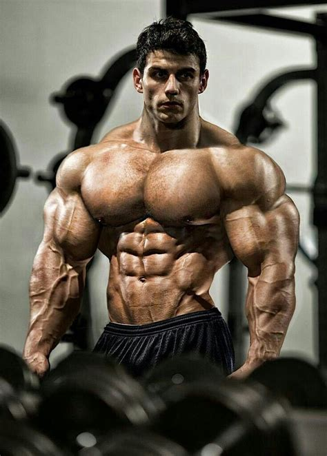 pin  tom rogers  morph muscle bodybuilding muscle