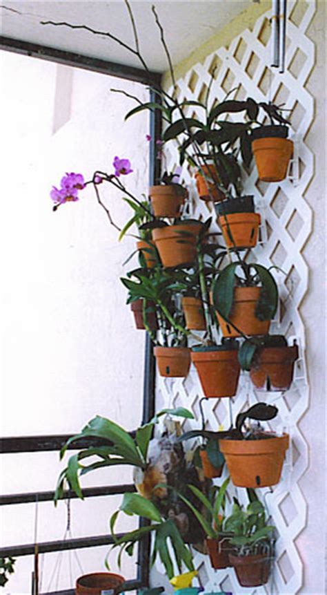 orchid hanger orchid supplies flower poles hang  pot