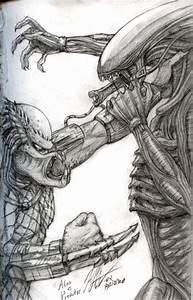 Alien Vs. Predator Sketch by KNKL on DeviantArt