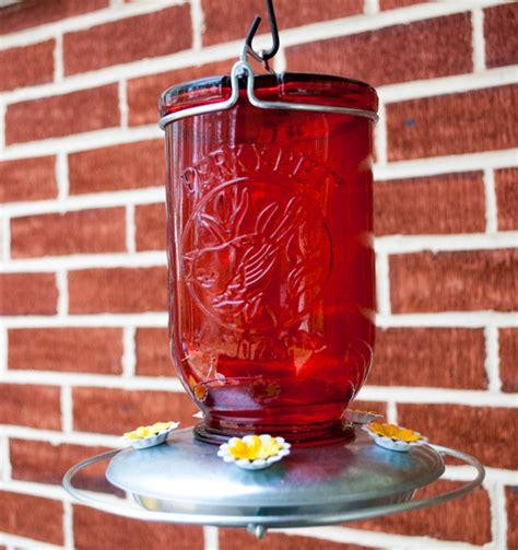 what do i put in my hummingbird feeder putting up hummingbird feeders birdseed binoculars