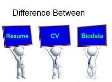 Difference Between Profile Biodata Resume by Zone