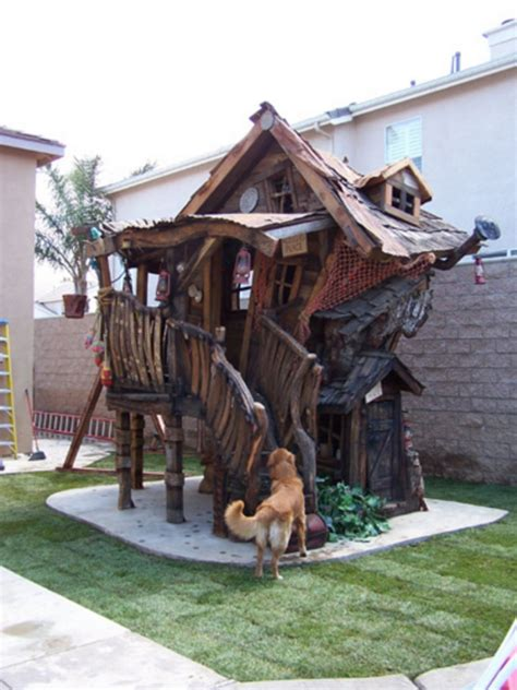crooked house club house tree house designs cool