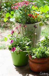 Creative, Flower, Pot, And, Planter, Uses