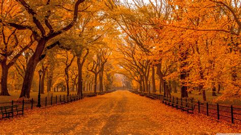 Autumn 4k Uhd Wallpapers by Beautiful Autumn Landscapes Of The World 4k Hd Desktop