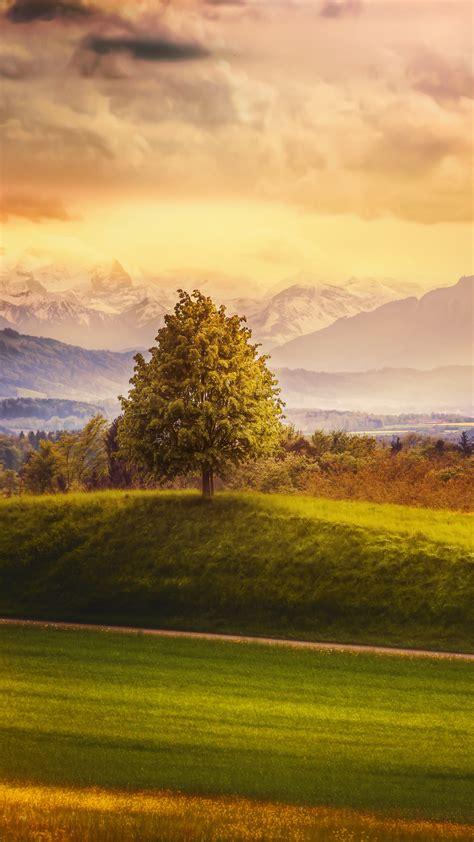 wallpaper switzerland   wallpaper  alps