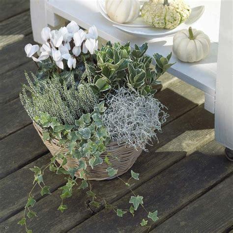 Garten Im Herbst Bepflanzen by Balkon Garten Im Herbst Und Winter Forum