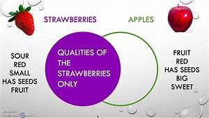 Venn Diagram Example For Kids