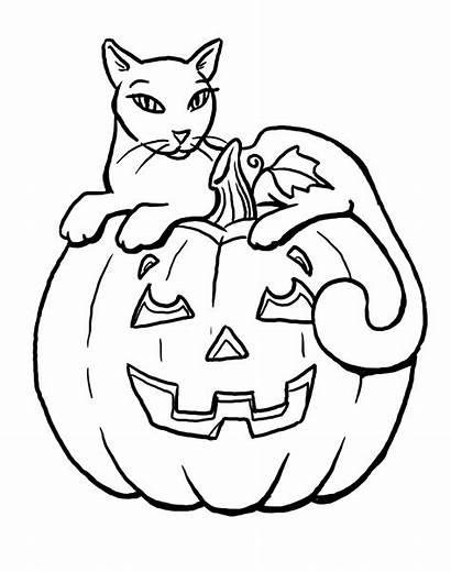 Coloring Cat Pages Spooky Halloween Printable Getcolorings
