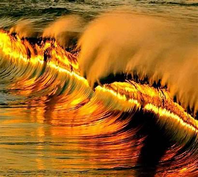 Wave Golden