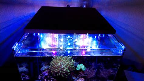 aquarium led beleuchtung selber bauen led aquarium beleuchtung bausatz fischfutter 24