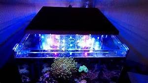 Led Beleuchtung : led aquarium beleuchtung bausatz von fischfutter 24 youtube ~ Orissabook.com Haus und Dekorationen