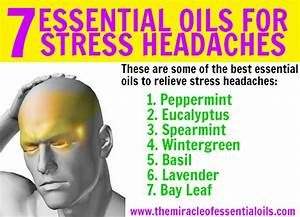 7 Essential Oils For Stress Headaches  U0026 2 Effective Diy