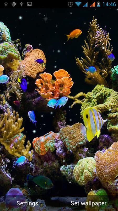 aquarium  wallpaper  android  wallpaper