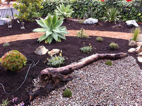 what is xeriscape landscaping san diego xeriscape garden breceda landscape