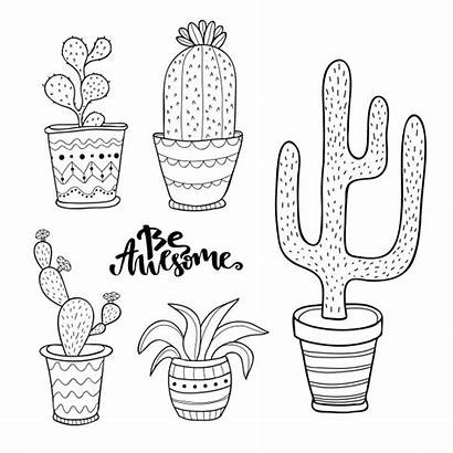 Cactus Doodle Desenho Plantas Macetas Succulent Cactos