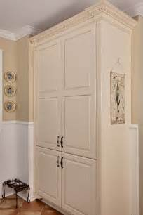 pantry cabinet ideas kitchen surprising free standing corner pantry cabinet decorating ideas gallery in kitchen traditional