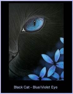 Blue Violets Drawing