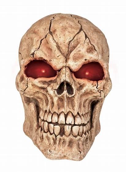 Skull Transparent Head Clipart Clip Giant Skeleton