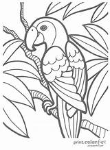 Coloring Pages Tropical Adults Popular sketch template