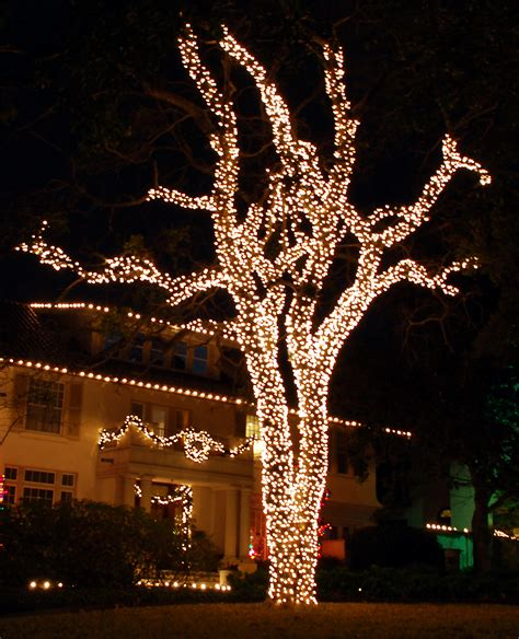 how to wrap christmas lights best 28 how to wrap outdoor trees with christmas lights