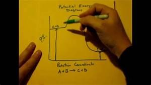Potential Energy Diagram Basics  Pe Diagrams