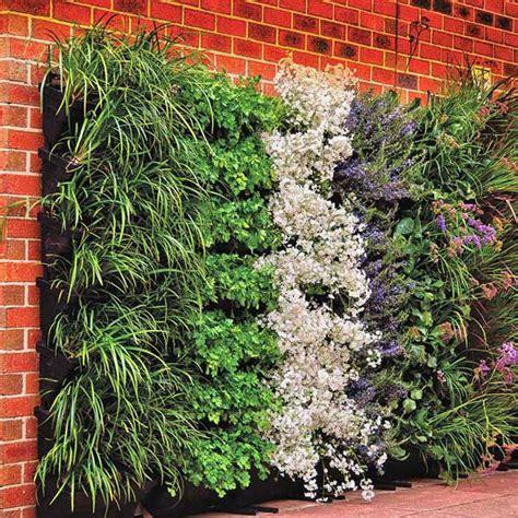 Vertical Garden Better Homes And Gardens by Wall Garden Diy Vertical Wallgarden System Plants Green