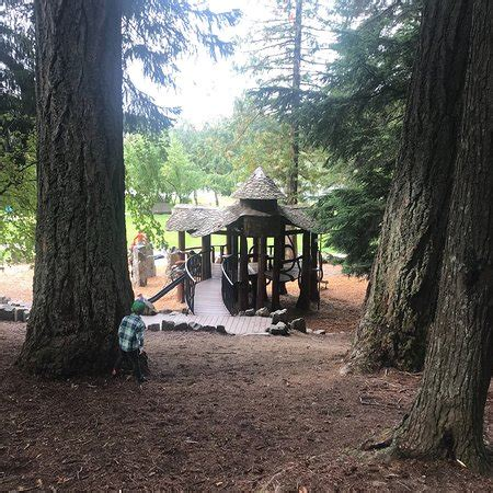 2019 alpha lake alpha lake park whistler aktuelle 2019 lohnt es sich
