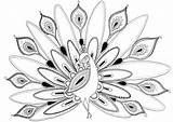 Peacock Coloring Pages Draw Peacocks Felicity French Drawing Posted Comment Printable Felicityfrench Sheets Print February Discover sketch template