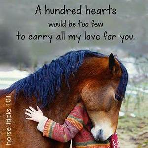 Horse hugging g... Horse Owning Quotes