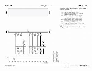 Wiring Diagram 2016 Kia Sorento Belts