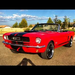 1966 65 FORD MUSTANG G.T 350 SHELBY TRIBUTE! RESTOMOD! 289 V8! BUILT TO ORDER!! for sale: photos ...