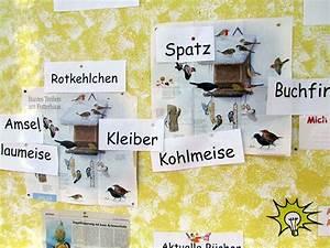 Vögel Im Winter Kindergarten : zebras im winter zebrafanclub der blog zum lehrwerk ~ Whattoseeinmadrid.com Haus und Dekorationen