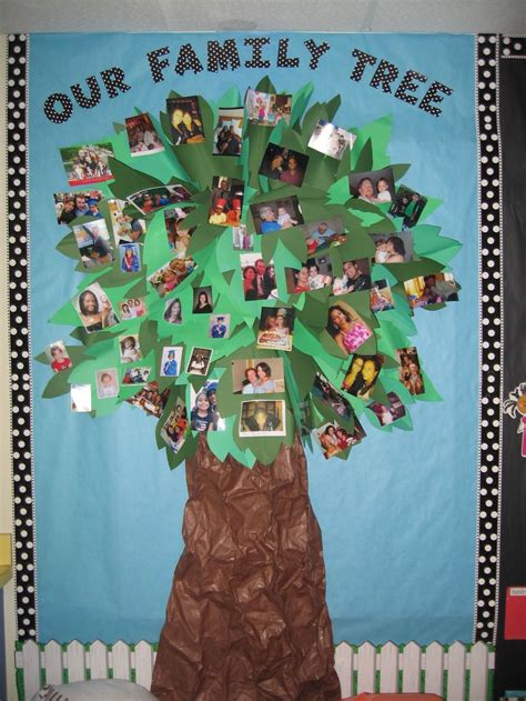 family tree bulletin board ideas for preschool best 25 classroom family tree ideas on 615